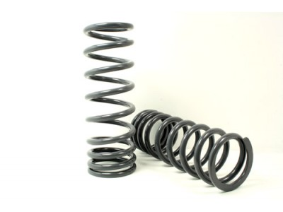 Heavy Load Rear Springs -...